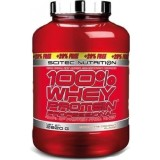 Whey Protein Professional 2820 гр
