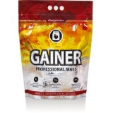 GAINER professional mass 5кг