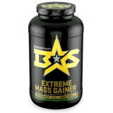 BINASPORT EXTREME MASS GAINER 2500