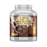 Tree of life Mass 2730 гр